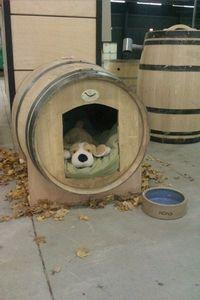 Hondenhok gemaakt van wijnvat