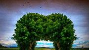 R F Landscape by Victoria Mishina