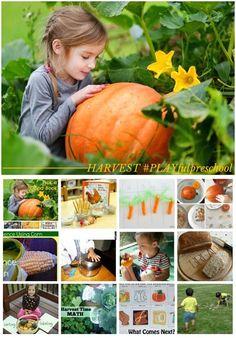 Harvest Preschool Activities: A Social Studies Lesson