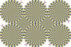 Bewegt sich dieses Bild? Deine Antwort offenbart, ob DAS in deinem Gehirn passiert. | LikeMag | We like to entertain you