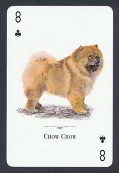 Chow Chow dog playing card single swap eight of clubs - 1 card