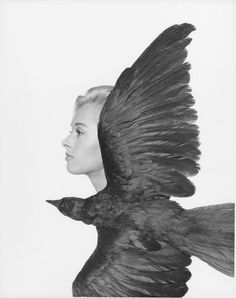 Tippi Hedren by Philippe Halsman, The Birds, 1963.
