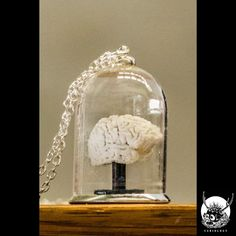 "Collier Gothique Curiology ""Brain in Bell Jar"""