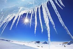 Image: Icicles on Snow Hill Island, Antarctica. (© Frank Krahmer/Getty Images)