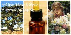 : www. Healing, Herbs, Makeup, Make Up, Herb, Beauty Makeup, Bronzer Makeup, Medicinal Plants