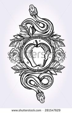 Hand-drawn vintage tattoo art. Vintage symbol, detailed hand drawn forbidden apple and tempter serpent, element of a Biblical story of Eve, sin temptation linear style. Engraved isolated vector art.