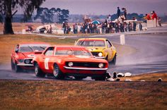 Australian Cars, Rope Knots, Sports Sedan, Sedans, Motor Sport, Road Racing, Cars Motorcycles, Race Cars, Classic Cars
