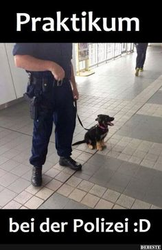 Praktikum bei der Polizei.   Lustige Bilder, Sprüche, Witze, echt lustig