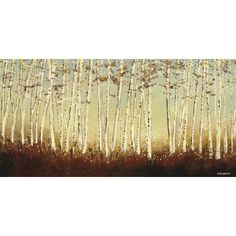 Art Group Birch Trees by Serena Sussex Art Print on Canvas