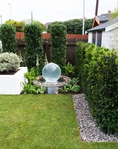 Use evergreen structure for a low maintenance garden. Great hedging and water feature surrounded by shade tolerant plants