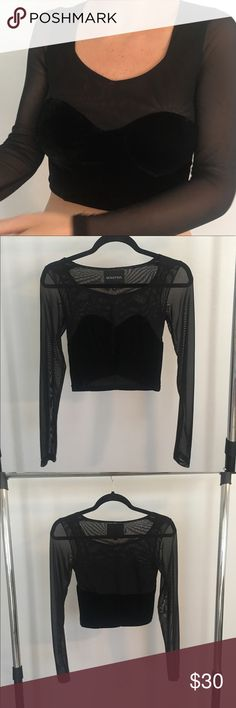 Urban Outfitters crop top Long sleeved black velvet and mesh crop top purchased from Urban Outfitters. Perfect condition - Only worn in cover photo. Very cute and unique! MINKPINK Tops Crop Tops