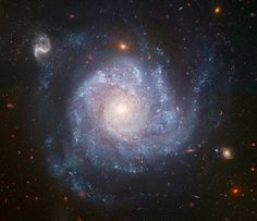 galassia NGC 1309, grande un terzo della nostra Via Lattea e distante 100 milioni di anni luce. Sullo sfondo della foto scattata da Hubble nel 2006 sono visibili decine di altre galassie più distanti.