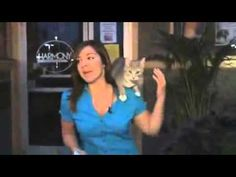 "Funny Cat Video Best Cat VideoBest Funny Cat Fails & Falls Videos - http://positivelifemagazine.com/funny-cat-video-best-cat-videobest-funny-cat-fails-falls-videos/ http://img.youtube.com/vi/Q-JRvCfji5M/0.jpg                                             Please watch: ""Lion vs lion, Male lion attacks female lion and her baby"" ➨ https://www.youtube.com/watch?v=qRySgqus8v8 -~-~~-~~~-~~-~- Funny Cat Video …    source"