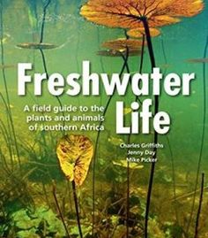 Freshwater Life: A Field Guide To The Plants And Animals Of Southern Africa PDF