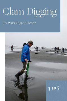 In the Pacific Northwest Clamming is a family-friendly, dog-friendly activity that just about anyone can do. Check out the blog with everything you need to know to start clam digging in the pacific Northwest.
