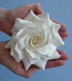 The Petalsweet Blog: Sugarpaste Roses by Petalsweet