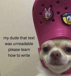 Memes Humor, Kpop Memes, Funny Humor, Meme Meme, Really Funny Memes, Stupid Funny Memes, Funny Relatable Memes, Memes For Texting, Really Meme