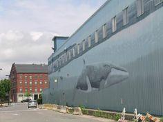 Whale wall- Old Port, Portland ME
