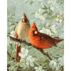 """Paint By Number Kit 16""""X20""""-Cardinals & Cherry Blossoms"""