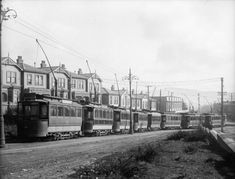 Row of electric trams in Newtown, Wellington, Photograph taken by Sydney Charles Smith. Quantity: 1 b&w original negative(s). Wellington City, Kiwiana, British Isles, Historical Photos, Old Photos, New Zealand, The Row, Past, Electric