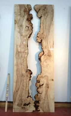 Horse Chestnut, Kiln Dry, Diy Wood Projects, Hardwood, Horses, Number, Mirror, Live, Natural