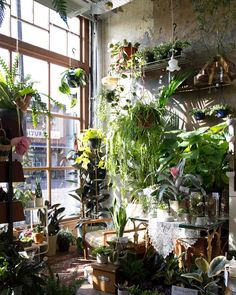 7 interior design ideas to take your home from spring to summer – Best Garden Plants And Planting Room With Plants, House Plants Decor, Plant Decor, Plant Aesthetic, Take You Home, Interior Garden, Interior Design Plants, Garden Spaces, Cool Plants