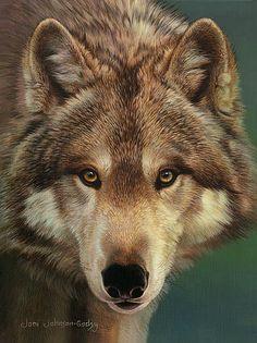 Beautiful wolf drawing