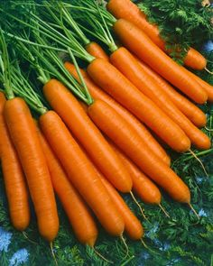 Zdrove KarmeLove: Dieta dr Dąbrowskiej - dzień 3 Atkins, Carrots, Health Fitness, Healthy Eating, Healthy Recipes, Vegetables, Food, Album, Diet