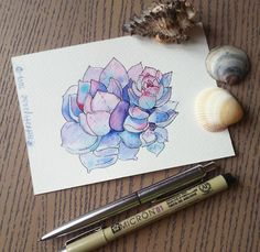 watercolor, succulents, succulent, sketch, sketching, fastsketch, акварель, скетч, суккулент, lilac, purple