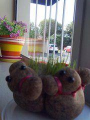 pair of grass growing ducks on my windowsill @work.. :-)