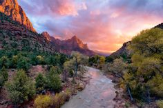 Get Zion information, facts, photos, and more in this Zion National Park guide from National Geographic.