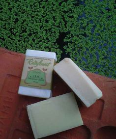 Unscented Castile Soap | Green Mommy Shop