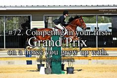 Submitted by Anonymous Photography by http://eventingdreams-photography.tumblr.com Used with permission