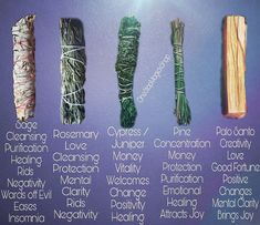 Smudging Prayer, Sage Smudging, Witchcraft For Beginners, Spiritual Cleansing, Herbal Magic, Smudge Sticks, New Energy, Book Of Shadows, Magick