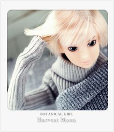 Close-Clipped Sheep 2010A/W BOTANICAL GIRL: Harvest Moon