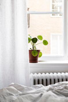 I wish I lived here: a white Stockholm apartment Interior Plants, Home Interior, Interior And Exterior, Interior Design, Scandinavian Apartment, Scandinavian Bedroom, Stockholm Apartment, Cactus Plante, Casa Patio