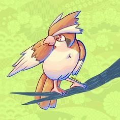 Taubsi Pidgey #016