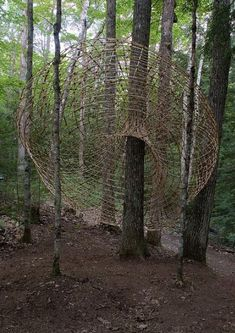 Jordyn Miley Contemporary Basketry amazing abstract nature weaving land art sculpture installation