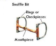 snaffle bit - Understanding the D ring