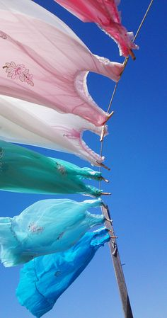 Sweet memories of the wash hanging on the line collecting a breeze and the rays of the sun...nothing smelled so good!