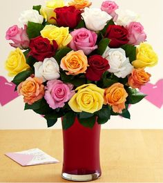 proflowers coupon code mark levin