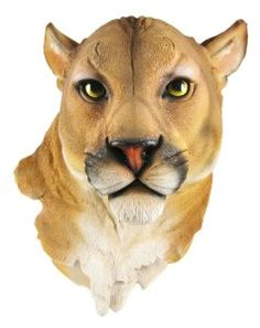 online shopping for Mountain Lion Head Mount Wall Statue Bust from top store. See new offer for Mountain Lion Head Mount Wall Statue Bust Wall Sculptures, Lion Sculpture, Lion And Lioness, Mountain Lion, Ceramic Animals, Animal Heads, Room Themes, Animal Drawings, Lions