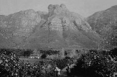 Kirstenbosch - before it was a botanical garden Nordic Walking, Cape Town, Botanical Gardens, South Africa, Mount Rushmore, Mountains, History, City, Travel