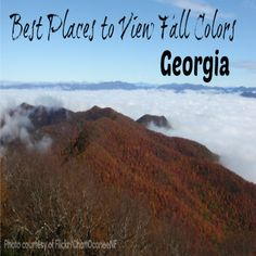 Best places to view fall colors in #Georgia!     It's that time of year again, when Mother Nature puts on her