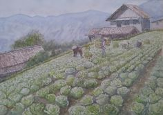 Vegetable Farmers, Tosari, Malang, East Java, Indonesia. ( Donny and his bad watercolor arts)
