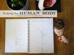 {PBL} The Human Body: Homeschool preschool project -  lots of child-led learning, observational drawing, exploration and discovery.