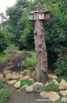 Tree stump bird house @Sarah Reid - an idea for your yard...to give the turkeys some feathered company!