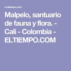 Malpelo, santuario de fauna y flora. - Cali - Colombia - ELTIEMPO.COM