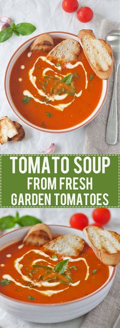 Tomato Soup from Fresh Ripe Tomatoes - Simply amazing Tomato Soup from Fresh Ripe Tomatoes is delicious. Just 15 minutes and a couple of ingredients to make it, quick & easy! Healthy Eating Recipes, Healthy Soup, Vegetarian Recipes, Cooking Recipes, Vegetarian Soup, Whole30 Recipes, Fresh Tomato Soup, Fresh Tomato Recipes, Tomato Tomato