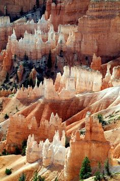 Bryce Canyon ~ Utah, USA